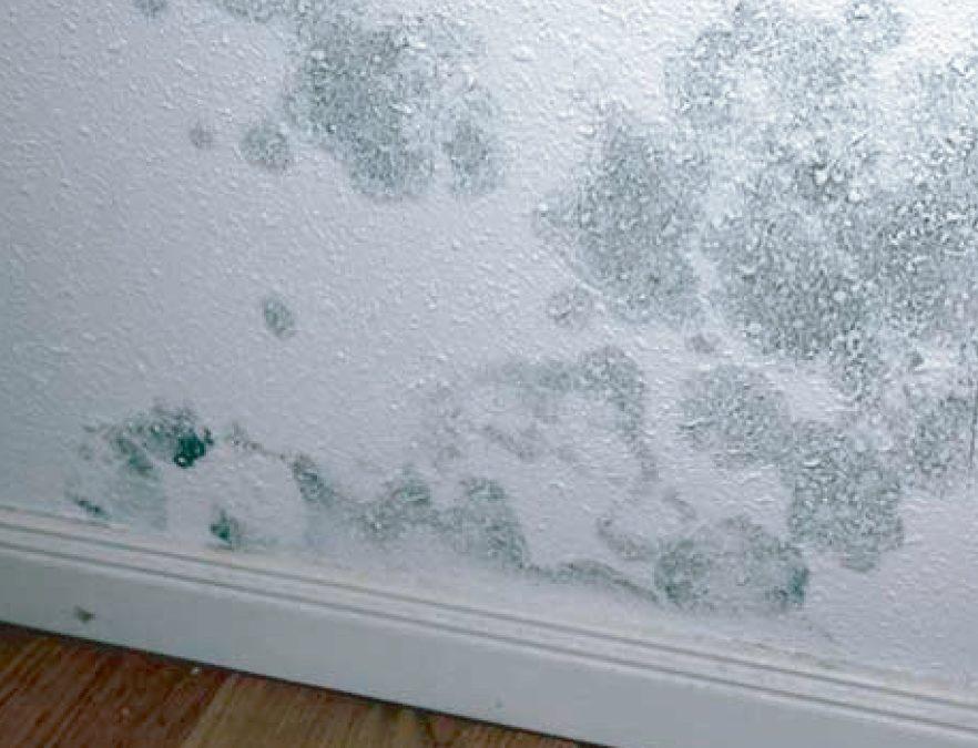 ¿Cómo eliminar y prevenir los diferentes tipos de humedades?